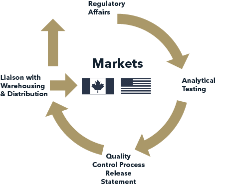 Exporting to Canada-Integrated Services Model